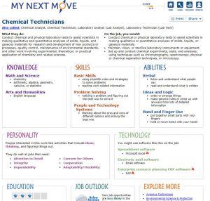 screenshot of career website